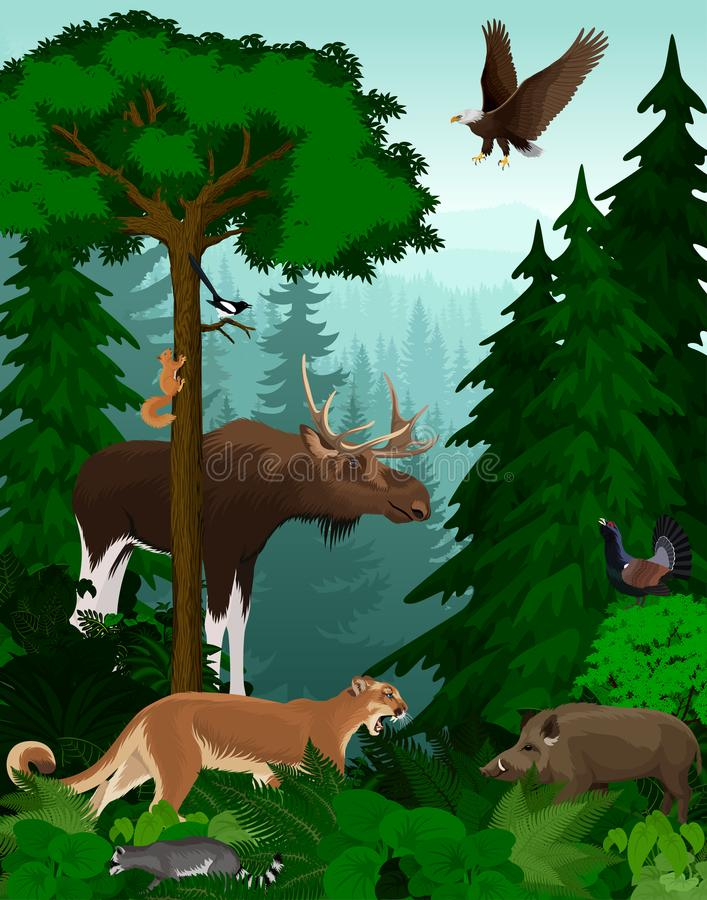 Dirigez les arbres forestiers verts de région boisée éclairés à contre-jour avec des animaux illustration de vecteur