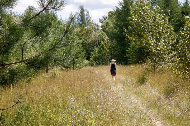 Pine branch passed on path. Dirt path leads into forest area. One woman walks on path toward forest in background. She passes a pine tree in foreground stock photo