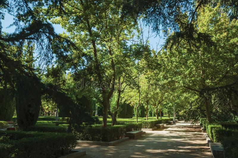 Dirt pathway passing through trees on a leafy garden in Madrid. Dirt pathway with benches passing through trees and lush vegetation on a leafy garden, in a sunny royalty free stock photography