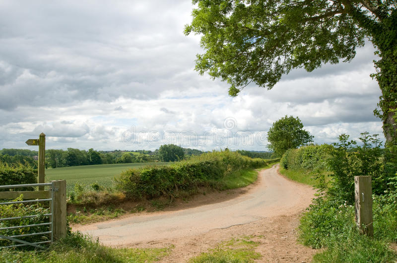 Dirt road. And fields during summer royalty free stock photography
