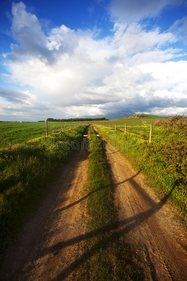 Dirt Road. In Alentejo, Portugal stock images