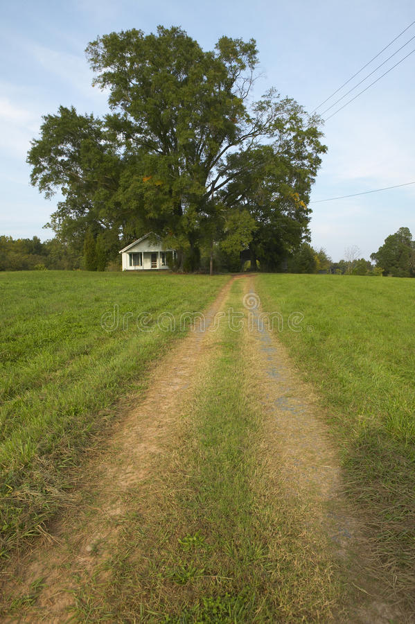 Download Dirt Road stock image. Image of tire, tree, states, america - 23179425
