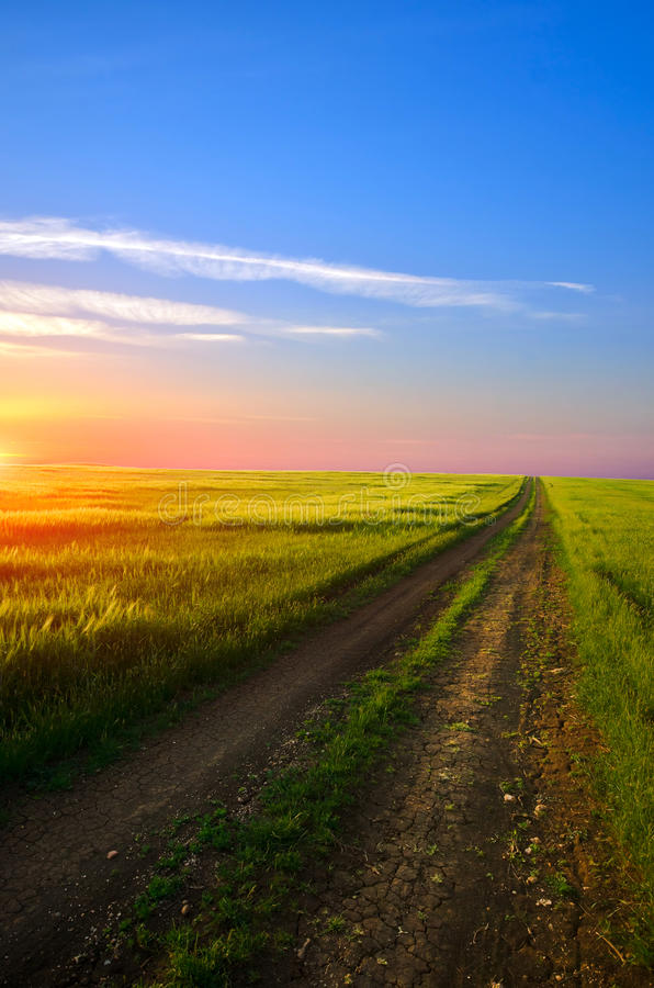 Download Dirt road stock photo. Image of green, sunny, blue, road - 25135830