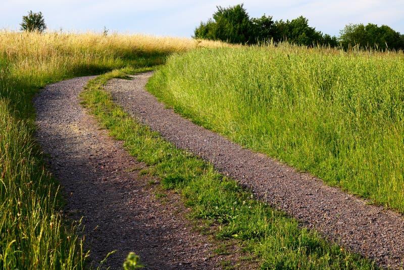 Download Dirt road stock photo. Image of landscaped, landscape - 26649286