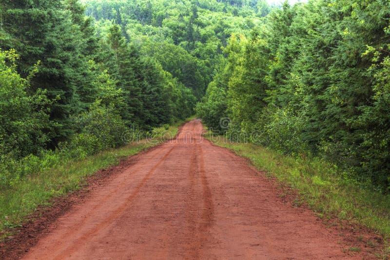 Dirt Road. A dirt road through trees on Prince Edward Island stock photos