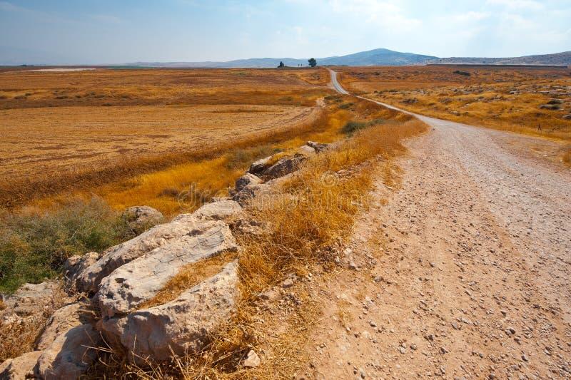 Download Dirt Road stock image. Image of ground, desert, israel - 28396331
