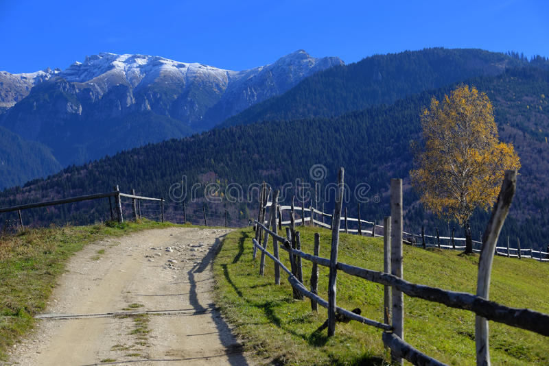 Dirt Road in Bucegi Mountains. Dirt road and wooden fence to the Bucegi Mountains in central Romania royalty free stock photography