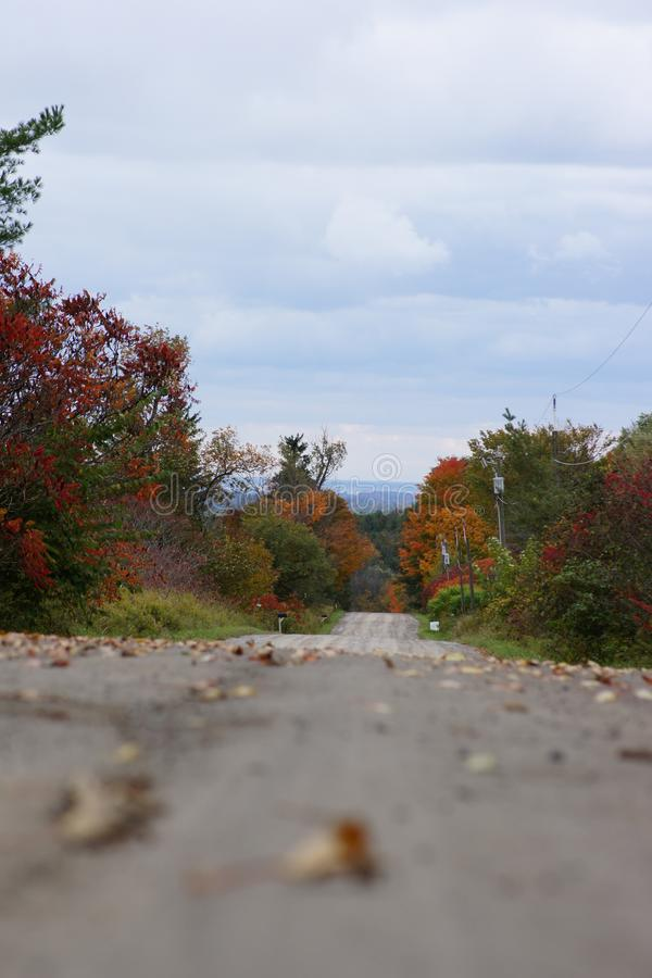 Dirt road in the country lined with trees wearing beautiful fall colors. royalty free stock photos