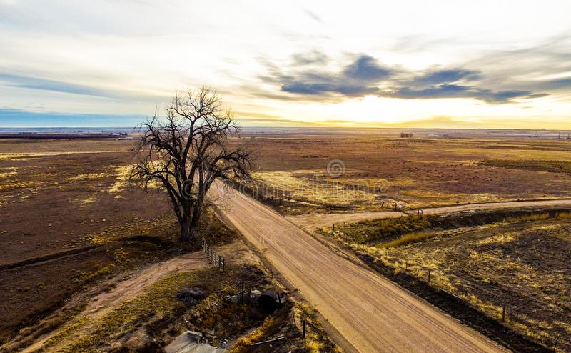 Dirt road intersection with lone tree. Intersection of a country dirt road and smaller road with a lone dead tree growing next to it. Shot in weld county on the royalty free stock photos