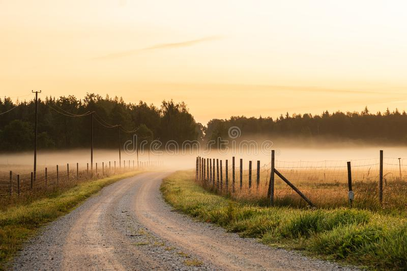 Dirt road leading to fog and sunrise during sunrise stock photography