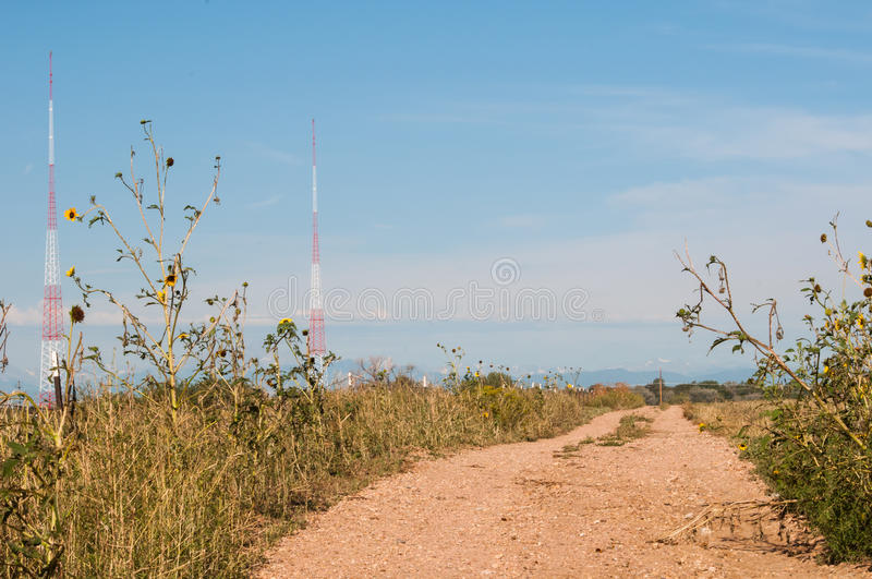 Dirt road lined with weeds and wild sunflowers. Airport beacon towers in the distance behind a small dirt road lined with sunflowers and weeds royalty free stock photo
