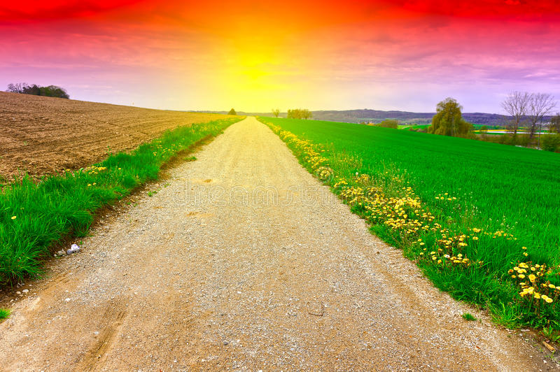 Download Dirt Road at Sunset stock image. Image of agriculture - 87656817