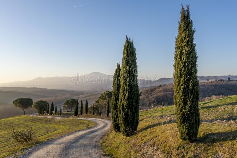 A dirt road winds through the Sienese countryside near San Quirico, Siena, Tuscany, Italy stock image