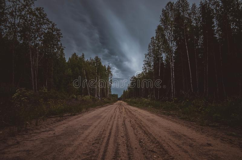 Dirt road in the woods. stock photos