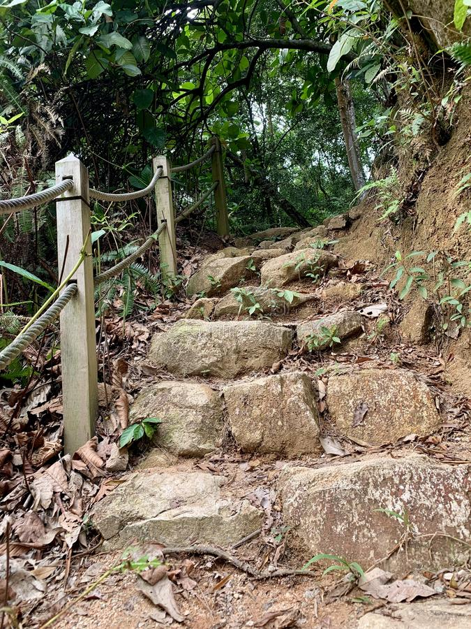 Dirt steps with wooden rail royalty free stock photos