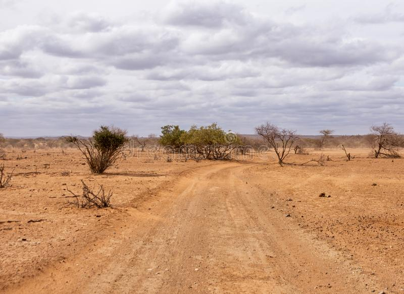 Limpopo Dirt Track. A dirt track in Limpopo province, South Africa royalty free stock photos