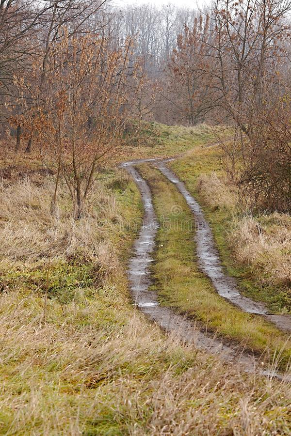 Dirtroad royalty free stock images