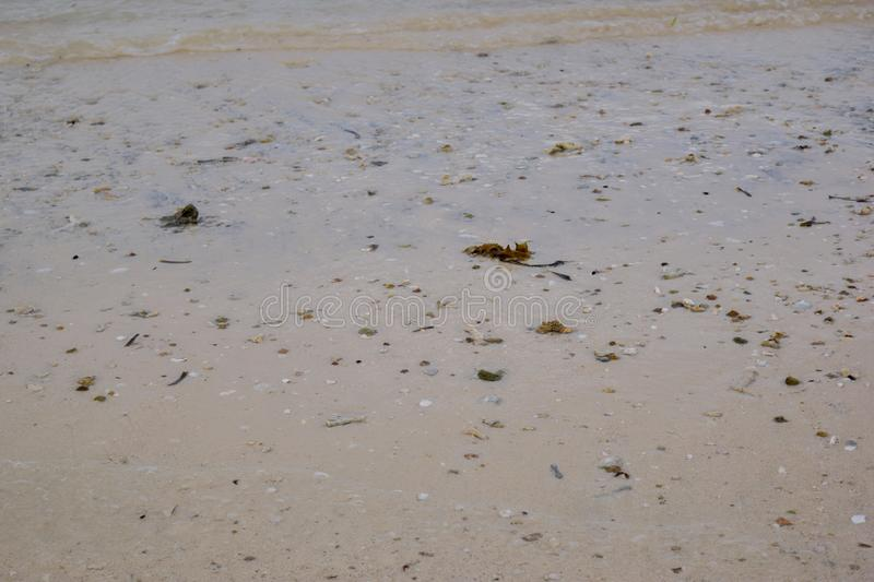 Dirty beach abstract background shoreline close up stylized stock image