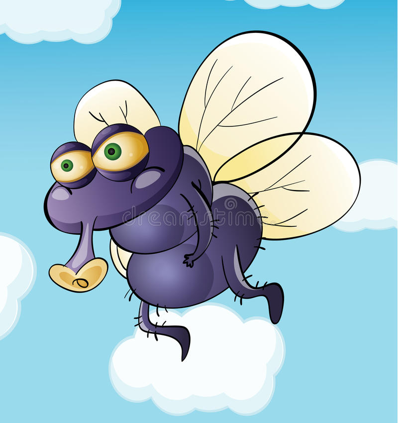 Download Dirty fly stock vector. Image of insect, hair, snout - 25874360