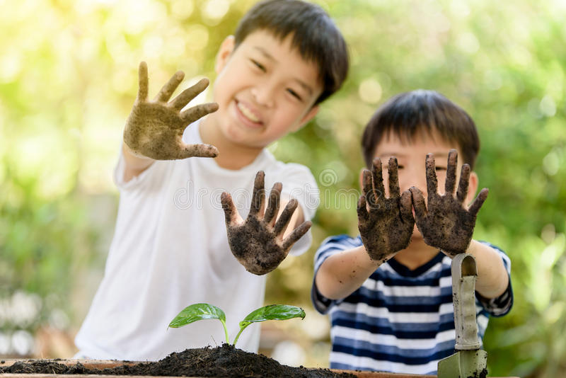 Dirty hand. Selective focus at hand of two young Thai boy that dirty from soil after plant little seedling on black soil. Earth day and family concept royalty free stock photos