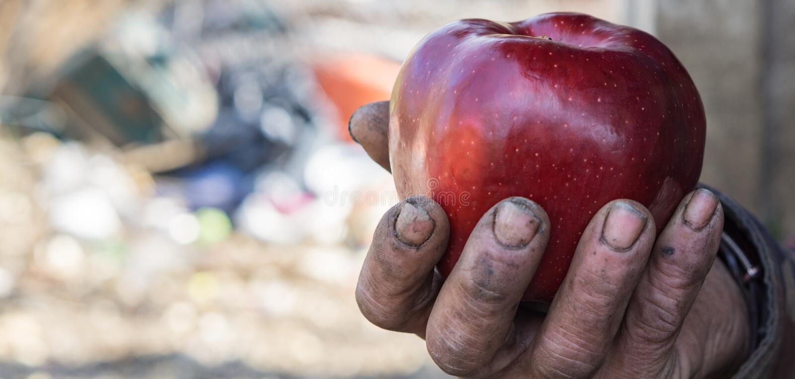 Dirty hands and fresh apple. Homeless dirty hands holding fresh red apple royalty free stock images