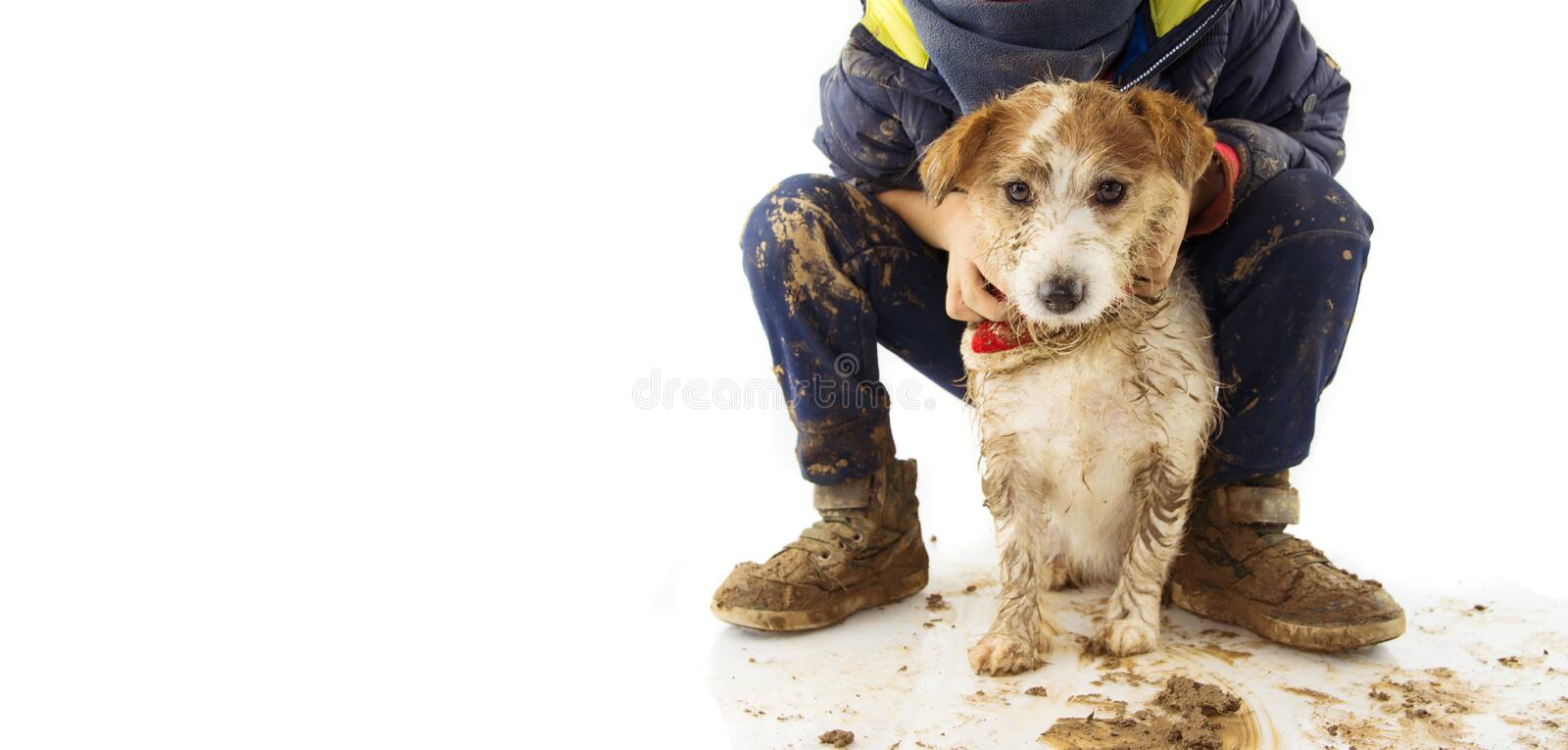 DIRTY  JACK RUSSELL DOG AND LITTLE BOY CHILD.  AFTER PLAY IN A MUD PUDDLE. ISOLATED SHOT AGAINST WHITE BACKGROUND. DIRTY JACK RUSSELL DOG AND LITTLE BOY CHILD stock photo