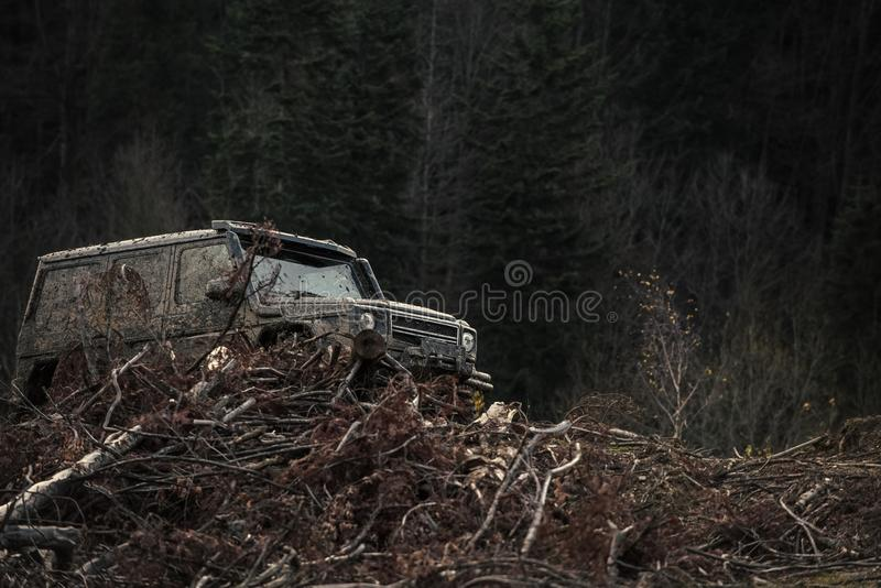 Dirty offroad car with dark forest on background, defocused. Pile of branches in front of car. SUV after offroad expedition. Extreme entertainment concept stock photos