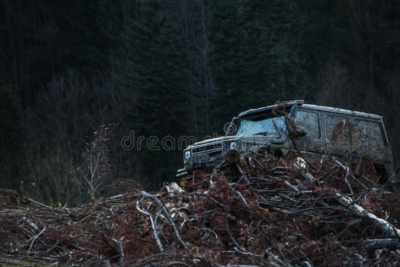 Dirty offroad car with dark forest on background, defocused. Pile of branches in front of car. SUV after offroad expedition. Extreme entertainment concept royalty free stock photo