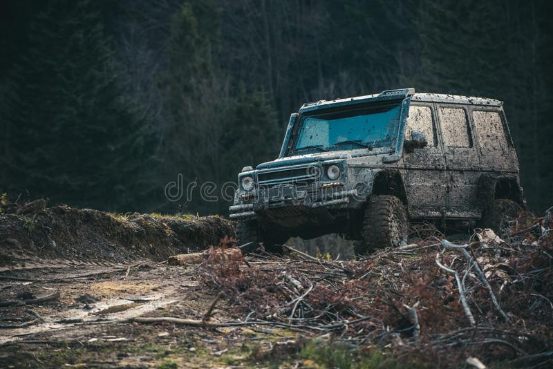 Dirty offroad car with dark forest on background, defocused. Pile of branches in front of car. SUV after offroad expedition. 4x4 racing concept royalty free stock image