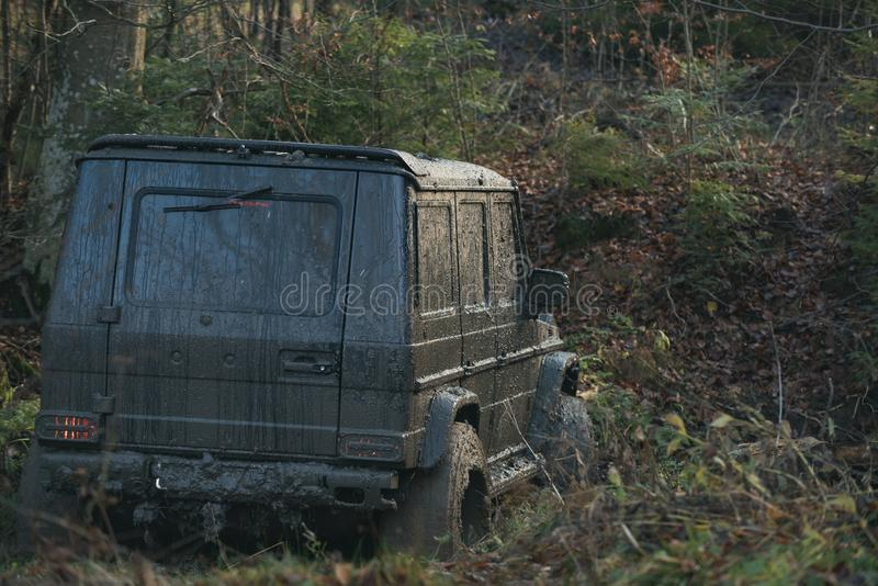 Dirty offroad car with fall forest on background, defocused. SUV with lights turned on path covered with leaves. Offroad race on sunny autumn day, back view royalty free stock photos