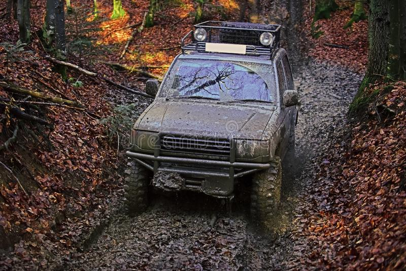 Dirty offroad car with fall forest on background. On sunny autumn day. SUV covered with mud on path covered with leaves. Tires, lights and bonnet covered with stock images
