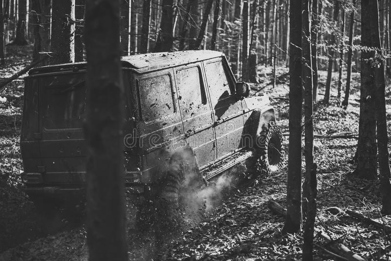 Dirty offroad car with fall forest on background. On sunny autumn day. SUV covered with mud on path covered with leaves. Crossover driving with cloud of smoke royalty free stock images