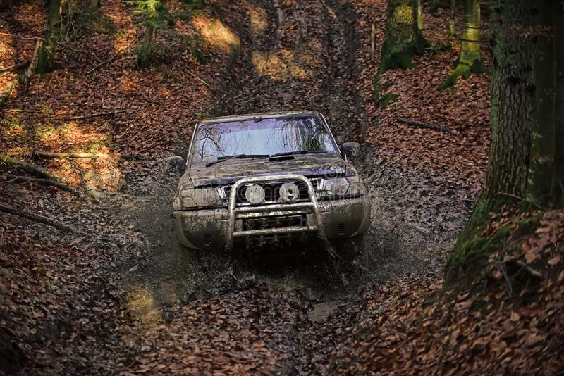 Dirty offroad car with fall forest on background. On sunny autumn day. SUV covered with mud stuck in dirt on path covered with fallen leaves. Extreme royalty free stock photography
