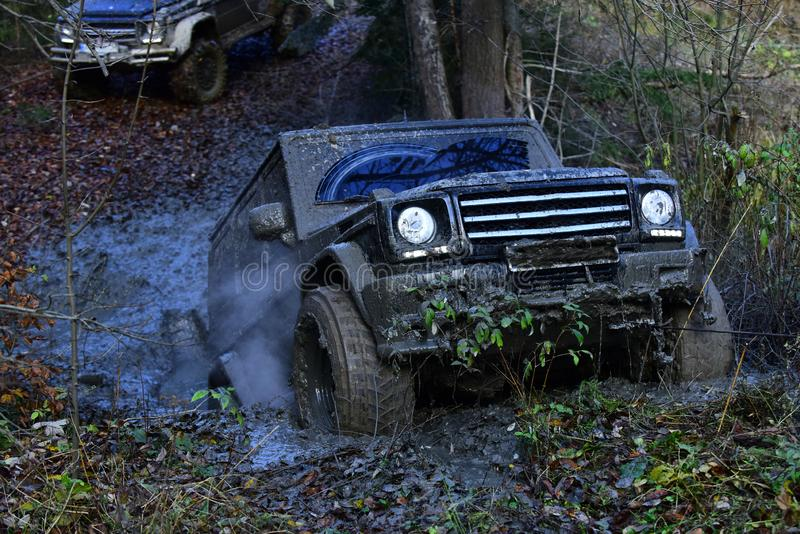 Dirty offroad car rides with obstacles in forest area. SUV covered with mud stuck on rally competitions. Black crossover driving with cloud of smoke through stock photography