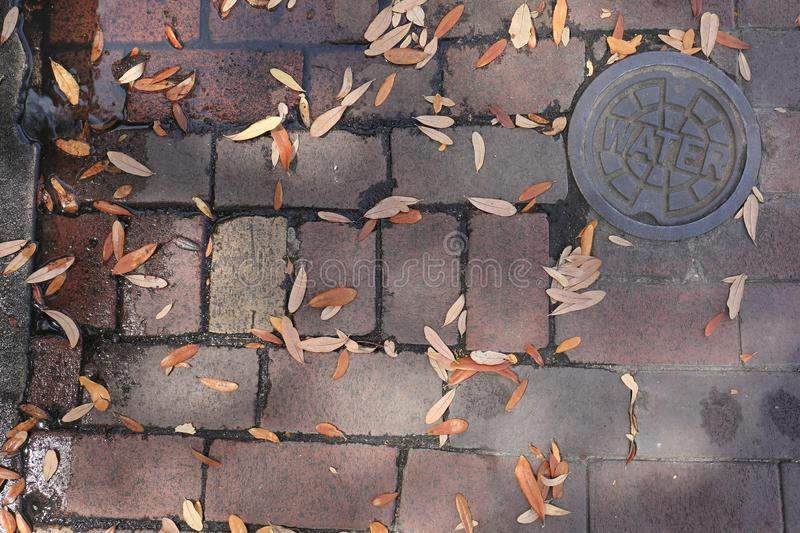 Dirty Old Brick Street with Leaves and Rusty Steel Water Cover. A great picture displaying a old dirty brick street with leaves and a rusty steel water valve stock photos