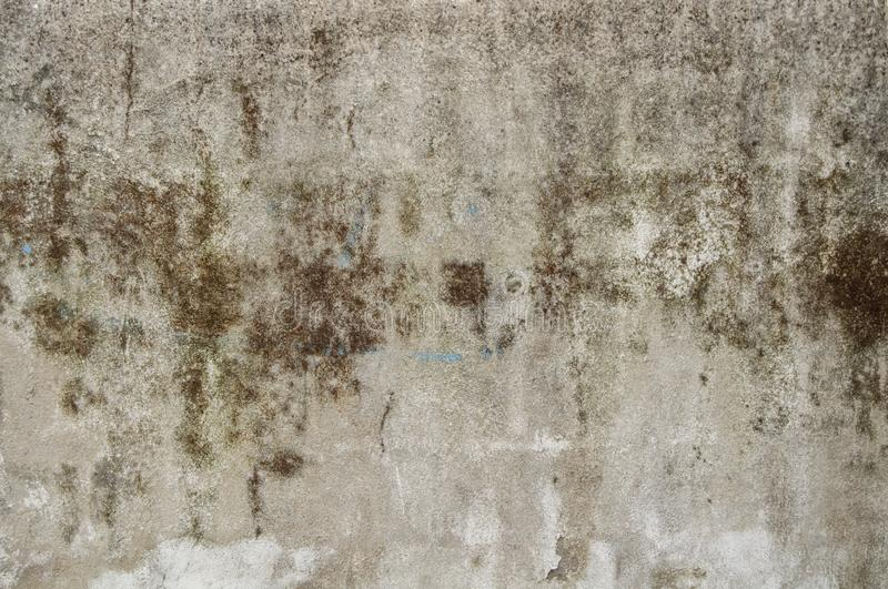 Dirty old building facade on an white cement wall texture for background and design art work. Dirty old building facade as seamless pattern texture background or royalty free stock photos