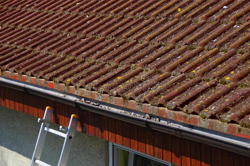 Dirty roof and gutter requiring cleaning stock image