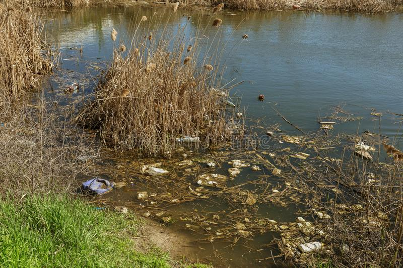Dirty sewage and household rubbish in small river, irrigation channel causes rapid growth of algae. Water pollution. Ecological pr. Oblem. Problem of plastic royalty free stock photo