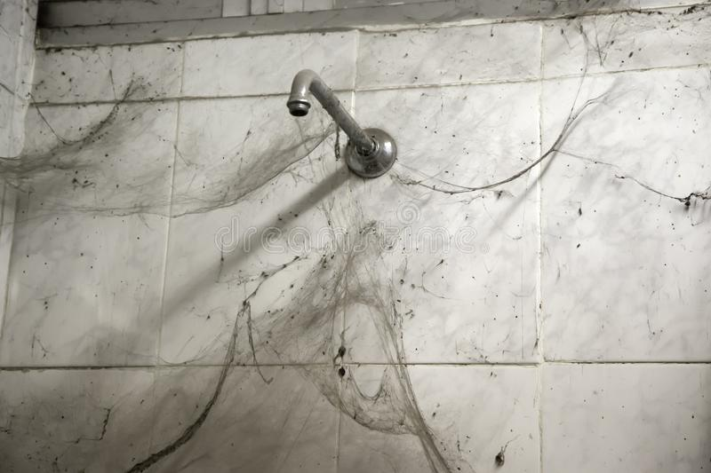 Dirty shower and cobwebs stock images