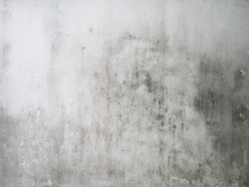 Dirty white wall royalty free stock image