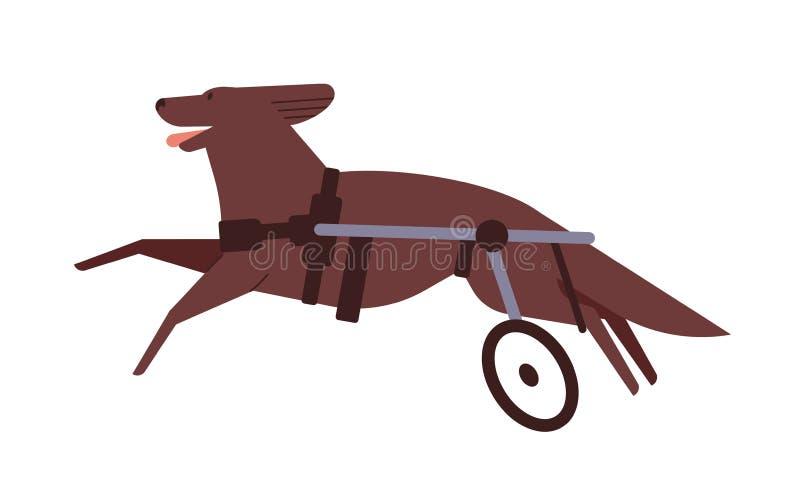 Disabilita illustrazione vettoriale piatta del cane Pet con sedia a rotelle spinale Concetto di stile di vita attivo per cuccioli illustrazione vettoriale