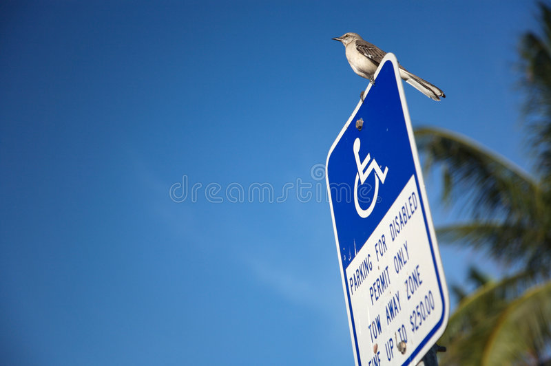 Download Disabled parking lot sign stock photo. Image of standing - 4543732