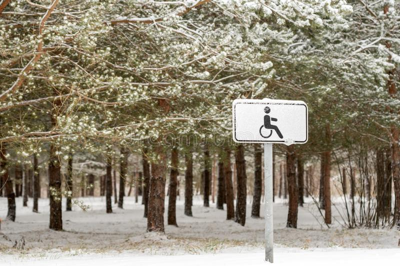 Disabled parking in a winter park royalty free stock photo