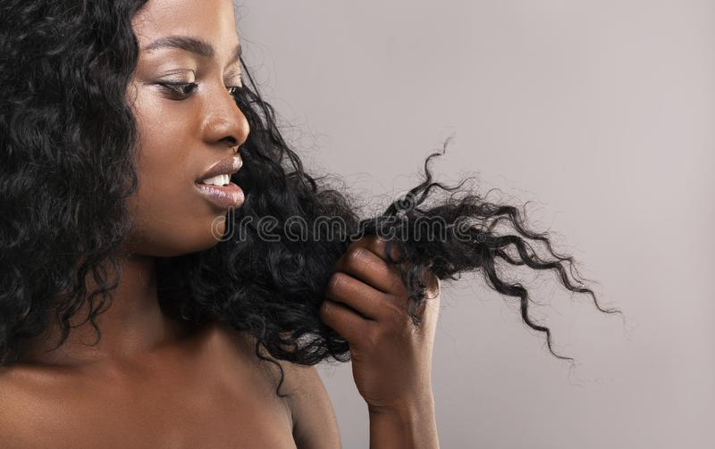 Disappointed african american woman looking at her dry damaged hair. Split ends. Disappointed african american woman looking at her dry damaged hair, grey studio royalty free stock photo