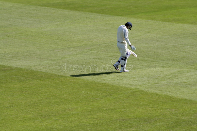 Disappointing innings. A batsman shows his frustration after getting out cheaply royalty free stock photos