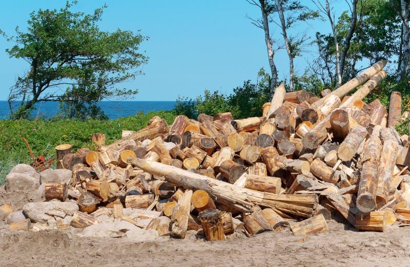 Disboscamento, alberi abbattuti, colleganti la costa fotografie stock