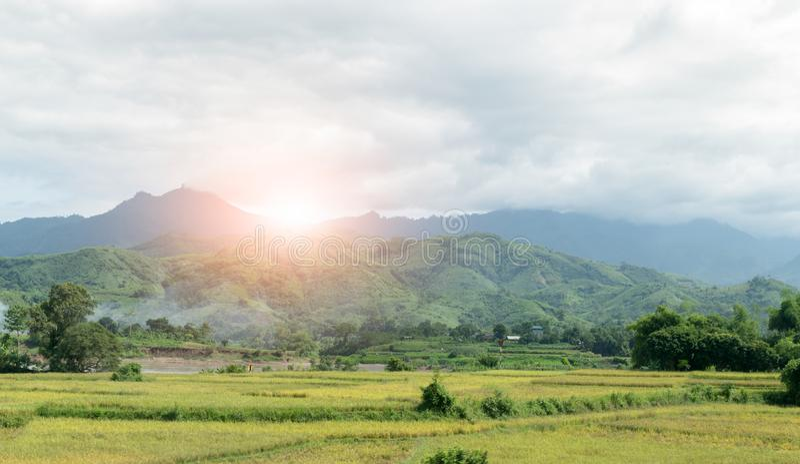 Disboscamento sulla montagna con alba e nuvoloso immagini stock libere da diritti