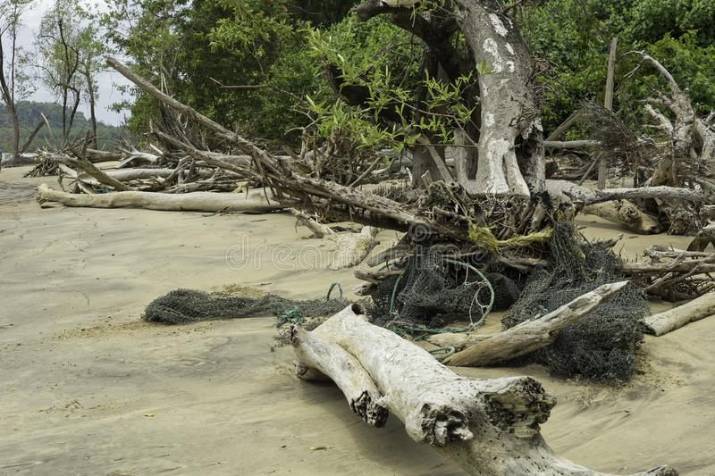 Discarded fishing gear, French Guiana stock photos
