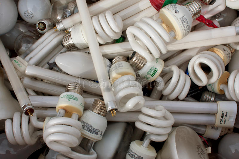 Discarded Light Bulbs Fill Box At Recycling Event royalty free stock photography