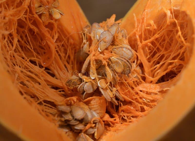 Disclosed core pumpkin stock photos